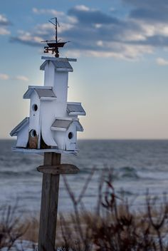 Bird house cottage by the sea! Coastal Homes, Coastal Living, Palomar, Bird Cages, Bird Feeders, Beach Cottages, Simple Pleasures, Little Houses, Land Scape