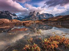 Eden's Garden, parc de «Torres Del Paine» au Chili, par Adriano Neves