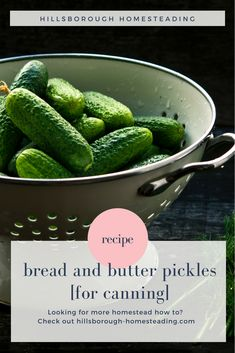 This super easy old fashioned Bread and Butter pickles recipe for canning is sure to be a hit with your family! Sweet and spicy they're great to munch alone or in a sandwich. I've included canning instructions or you can throw them in the refrigerator. Bread N Butter Pickle Recipe, Bread & Butter Pickles, Canning Tips, Canning Recipes, Low Acid Recipes, Healty Dinner, Whole Food Diet, Pickles Recipe, Canning Pickles