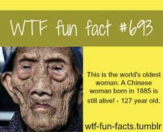 WTF Fun Facts is updated daily with interesting & funny random facts. We post about health, celebs/people, places, animals, history information and much more. New facts all day - every day! Wow Facts, Wtf Fun Facts, True Facts, Funny Facts, Funny Memes, Crazy Facts, Random Facts, Random Stuff, Amazing Facts