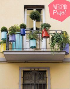 Painted Paint Tin Planters - Photo by Cludio Sabatino for Bravacasa (April 2012)