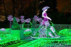 królewski ogród światła - Szukaj w Google