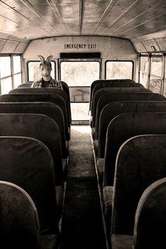Même seul dans un bus les chansons de Pale sont là invisibles et ardentes !