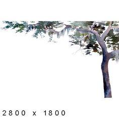 Texture Other Watercolor Elements Plants Watercolor Trees, Watercolor Landscape, Architecture Graphics, Art And Architecture, Architectural Trees, Plant Texture, Tree Graphic, Tree Logos, Photoshop Elements