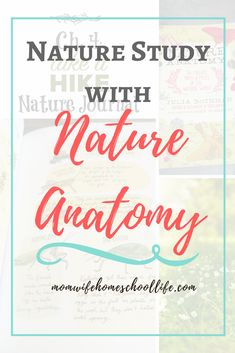 Nature Study with Nature Anatomy by Julia Rothman. How we do nature studies using Nature Anatomy. FREE printable nature journaling pages and. Desktop Background Nature, Desktop Backgrounds, School Plan, Nature Activities, Nature Study, Nature Journal, School Subjects, Love Mom, Kids Education