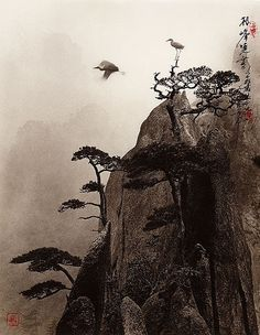 Photographs Reminiscent of Traditional Chinese Paintings Don Hong-Oai was born in Canton, China in 1929 and was raised and educated in Sa...