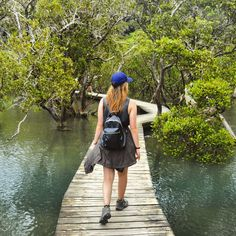 5 best weekend trips from auckland - Paihia Real World Runaway