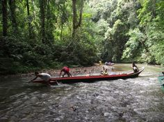 5 Eco Vacation Places in Malaysia | Eco Holidays, Places ...