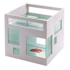Love this fish bowl! How relaxing would it be to have this guy next to your desk?