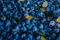 Blueberry, Sweets, Fruit, Food, Sweet Pastries, Goodies, Essen, Blueberries, Candy