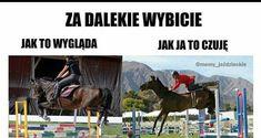 Horse Meme, Very Funny Memes, Read News, Horse Riding, Hogwarts, Equestrian, Haha, Horses, Humor