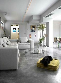 A polished concrete flооr adds sophistication and chic to modern interior design Garage Transformation, Home Interior, Living Room Interior, Transformer Un Garage, Polished Concrete, Deco Design, Design Trends, Home And Living, Contemporary Design