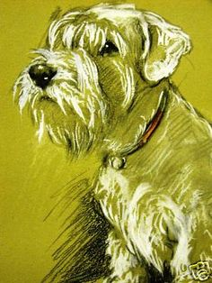Art - Dog - Drawing by Lucy Dawson
