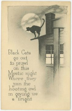 Vintage Gibson Black Cats Halloween Postcard Unused Great Condition NR | eBay