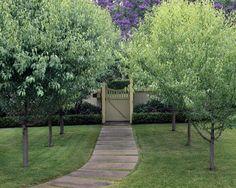 Arch to Gate Pyrus, Garden Landscaping, Landscaping Ideas, Garden Gates, Beautiful Gardens, Landscape Design, Arch, Sidewalk, Building