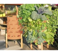 Terracotta Composting 50-Plant Garden Tower