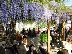 London's most beautiful beer gardens