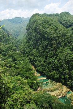 Overlooking the beautiful water pools of Semuc Champey in Guatemala (by Whirling Phoenix).