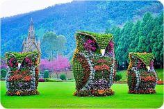 Owl Decorative Trees