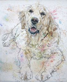 Alma, the the nicest Dog I know! Watercolour and Ink-Pen, 32 x 39 cm