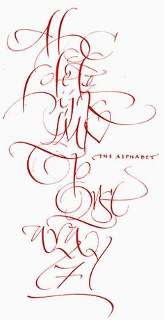 ✍ Sensual Calligraphy Scripts ✍  initials, typography styles and calligraphic art -  Alphabet by Sharon Zeugin
