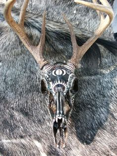 painted deer skulls | Artistic Painted Deer Skull