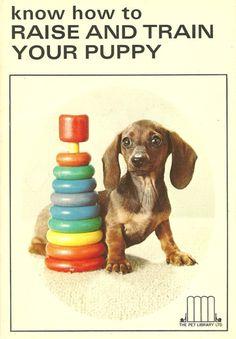 dachshundgifts.org