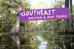Visit one of these five places and encounter true southern hospitality with your family. Check out Alamo's travel tips to find great vacation ideas for your family.