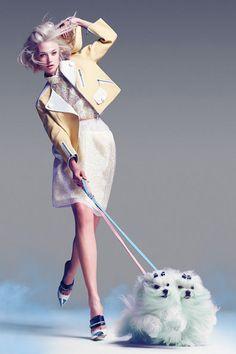 Model dogs, pastel