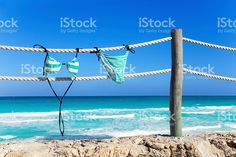 Blue woman's swimming suit hanging on white ropes royalty-free stock photo