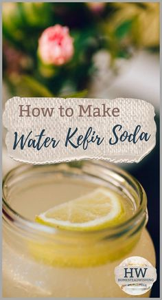 How To Make Water Kefir Complete With A Great First Recipe. This Guide Will Help You Get Started Making Water Kefir. Alongside Giving A Little History, And Help You Learn The Lingo Associated With Water Kefir. Fermented Sauerkraut, Fermented Foods, How To Make Water, Making Water, Kiefer Recipes, Kefir Probiotic, Probiotic Drinks, Kefir Yogurt, Gourmet Recipes