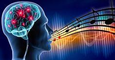 Chanter Ensemble Synchronise les Battements Cardiaques en Harmonie La neuroscience du chant démontre que lorsque nous chantons nos neurotransmetteurs se connectent d'une