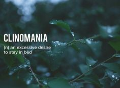 I was going to post this last night, but I fell asleep at 7pm... . . . . #devonstrang #wordoftheday #word #words #wordporn #dictionary #language #definition #clinomania #desire #stay #bed #sleep #tired #lazy #comfy #lovesleep