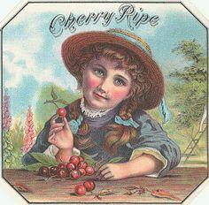 Google Image Result for http://bp0.blogger.com/_9uV-uftQG_U/RwpUh68t33I/AAAAAAAAAGc/Tm-2PSMWufI/s320/Lunagirl-CherryPie-cigarlabel.JPG