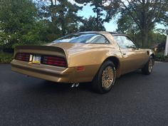 1978 Pontiac Trans Am Special Gold Edition for sale on BaT Auctions - closed on October 2016 (Lot 1978 Trans Am, 1978 Pontiac Trans Am, Pontiac Firebird Trans Am, Pennsylvania History, Pontiac Cars, S Car, Classic Cars Online, Future Car, Gto