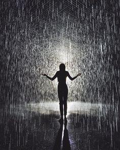rain room.