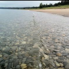 Are you ready to wander the shoreline in search of Petoskey stones? We are!