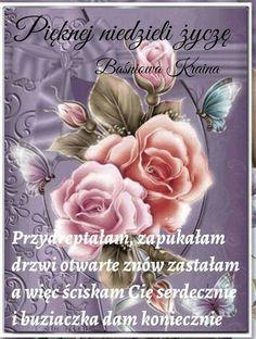 Good Morning, Rose, Flowers, Plants, Polish, Pictures, Buen Dia, Pink, Bonjour