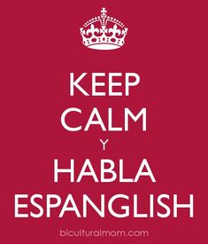 Bilingual/Spanglish/Slang/Mixed Languages. Why do you love them?  http://www.biculturalmom.com/