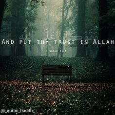 And #rely upon #Allah ; and #sufficient is Allah as #Disposer of #affairs.  #quran #Islam #quran_hadith