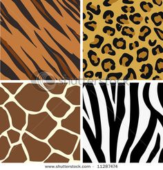 TOUCH this an interactive picture: Spots & Stripes: Patterns in animals by Cari Baker