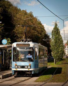Tram, streetcar.