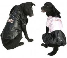 T-Bird and Pink Lady Grease 1950s Dog Costumes for Cool Dogs  sc 1 st  Pinterest & 176 best Halloween images on Pinterest | Halloween decorating ideas ...
