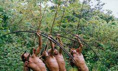 Los arqueros en el amazonas #informe  , visto por algunos como un deporte pero, estos arqueros de la selva amazonica son todo unos #pericial expertos en la caza con arco. La mayoria inicia la casa desde la pubertad y en su mayoria todos los que cazan son hombres cuesta mucho ver una mujer en este oficio veamos mas en : http://www.informeperito.com