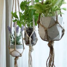 Macramé suspension pots.