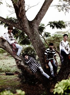 Mummy in the tree with the baby triplets <3 Chanyeol, Suho, Chen and Baekhyun | EXO Dear Happiness photobook 2016 ♥