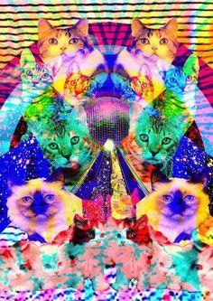 I dream of technicolored cats - Trippy digital art. Crazy Cat Lady, Crazy Cats, Trippy Cat, Trippy Cartoon, Art Beat, Psy Art, Art Sculpture, Collage, Space Cat
