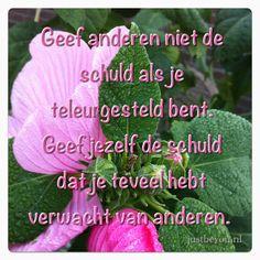 spreuken teleurstelling vrienden 603 beste afbeeldingen van Spreuken en teksten   Dutch quotes  spreuken teleurstelling vrienden