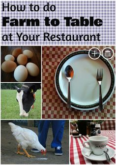 How To Start A Restaurant With No Money Food And Bev Pinterest - Farm to table restaurant business plan