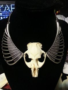 Muskrat skull necklace with metal wings. by KhaosByDesign on Etsy Metal Wings, Attention Grabbers, Bone Crafts, Skull Necklace, Skull And Bones, Hello Everyone, Repurpose, Horns, Skulls